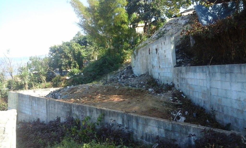 The Derek Boys did a great job clearing this part of their community a a way to bring restoration and leave a legacy in Paraíso!